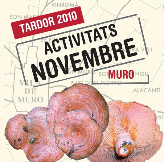 Activitats novembre